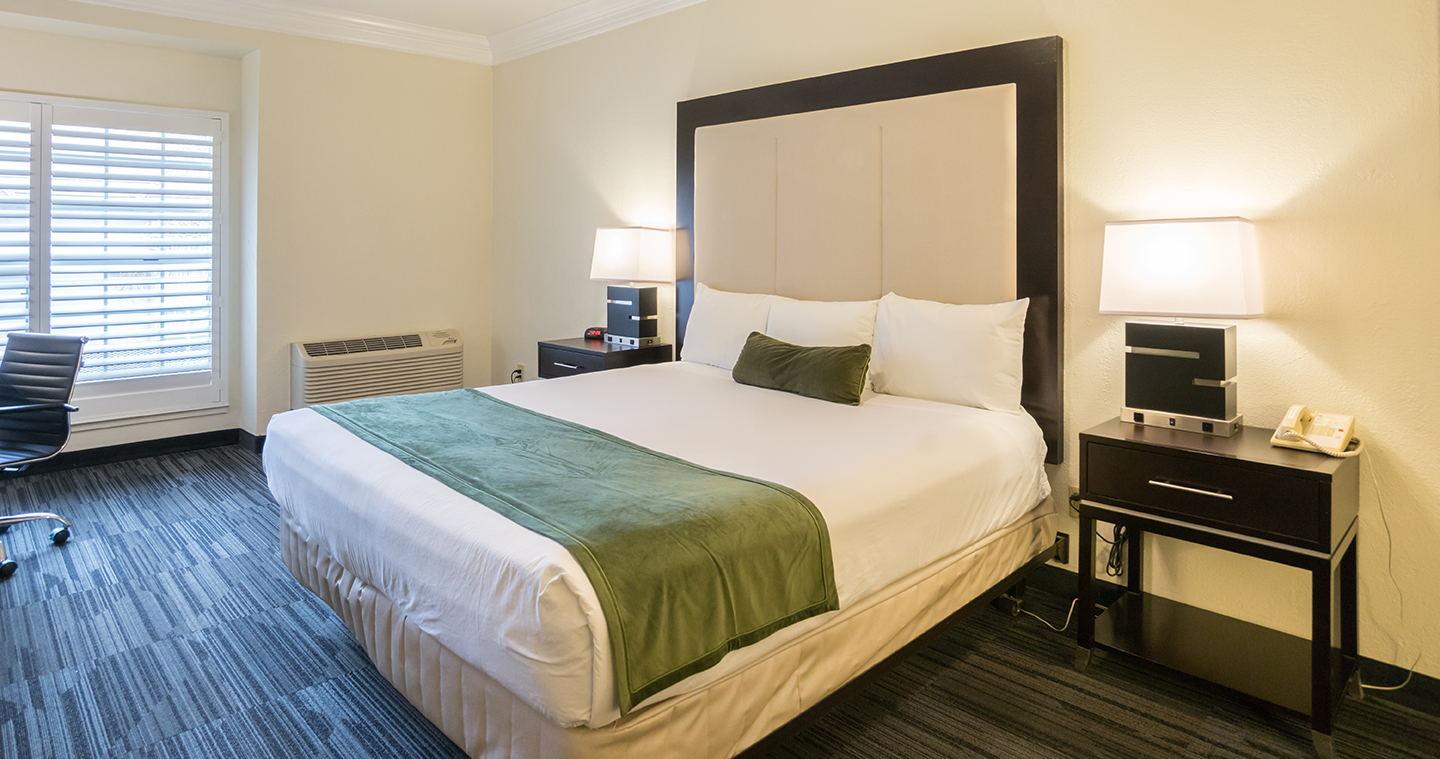 SPACIOUS AND WELL - APPOINTED GUESTROOMS EXPERIENCE CLEAN AND COMFORTABLE STAY AT AFFORDABLE RATES