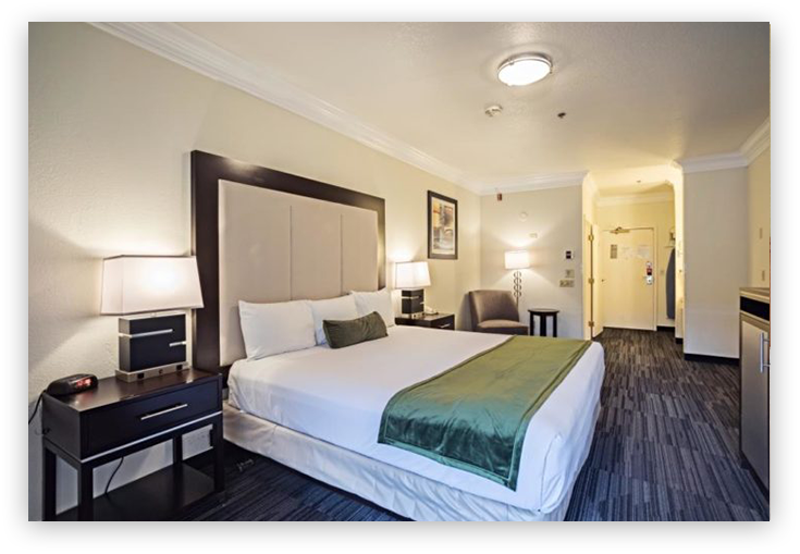 Arena Hotel Guest Room